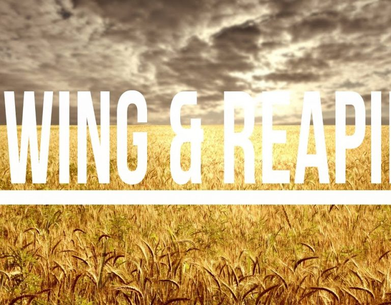 Sowing & Reaping Principles of Gods Releasing Favor!